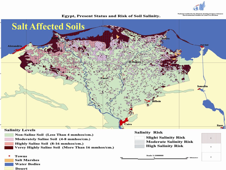 Wle 39 s salinity management framework for Soil salinization